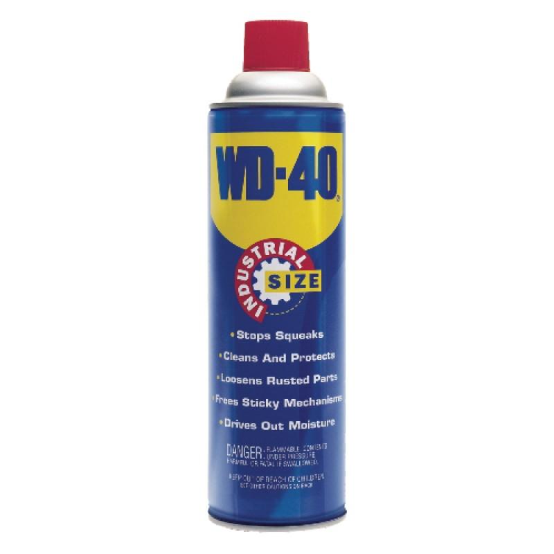 WD-40 Lubricating Spray (16 oz can)